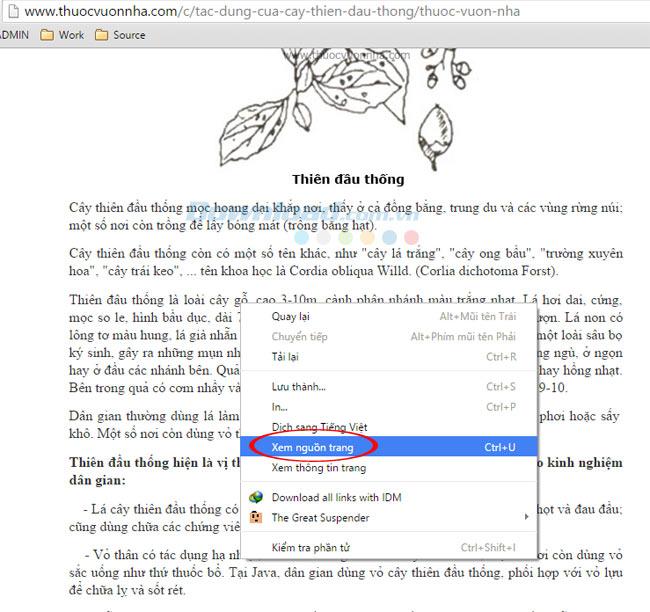 Cách copy nội dung ở những trang web không được cho phép