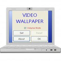 Cách cài đặt video làm hình nền máy tính