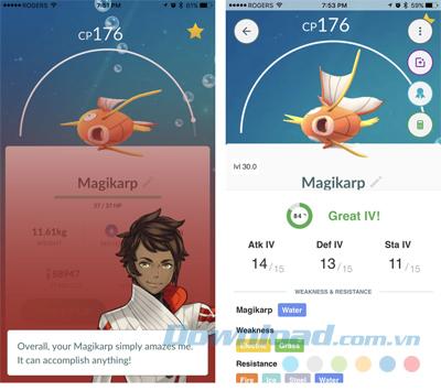 Tìm hiểu chính xác Pokémon nào sẽ tiến hóa