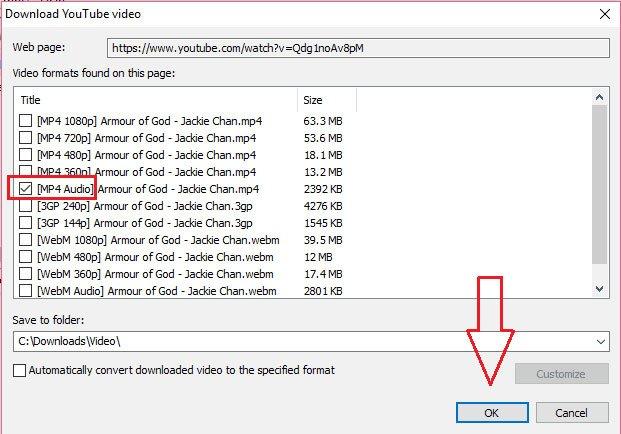 Nhấp vào định dạng MP4 Audio và bắt đầu tải file