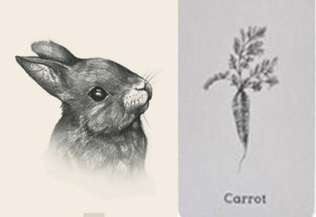 Ảnh ghép thỏ và cà rốt 4D