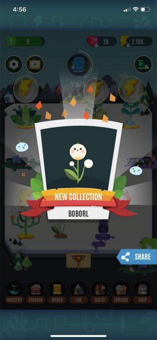 Game làm vườn vui nhộn Pocket Plants