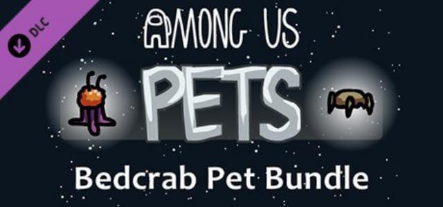 Nhiều loại pet cho bạn lựa chọn
