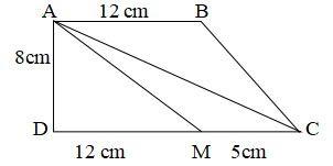 Bài 29