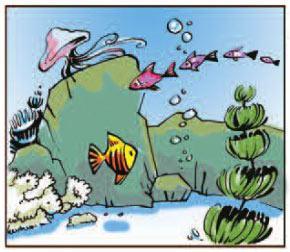 Thế giới dưới nước