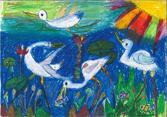 Những chú chim đang kiếm ăn bên dòng nước xanh mát