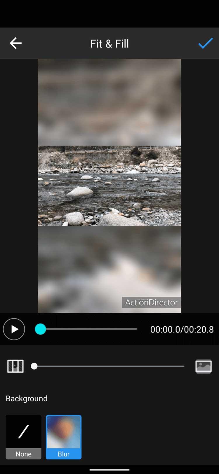 Action Director thêm hiệu ứng làm mờ video