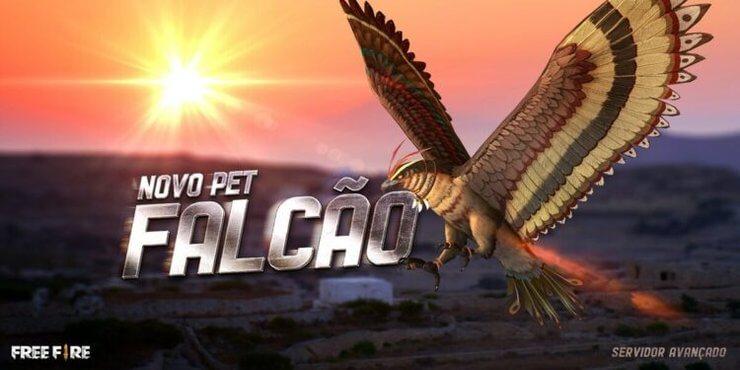 Pet Free Fire Falcon