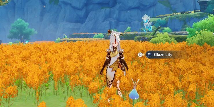 The location of Genshin Impact's Cypress flower