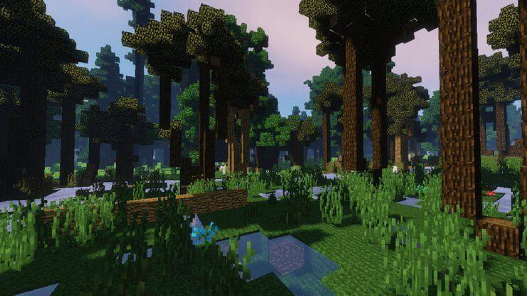 biome Minecraft forest 2 TOP các biome trong Minecraft dành cho người mới bắt đầu chơi