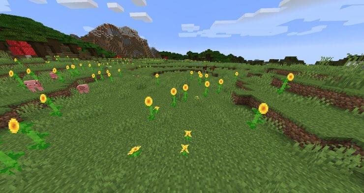 biome Minecraft plain 1 TOP các biome trong Minecraft dành cho người mới bắt đầu chơi